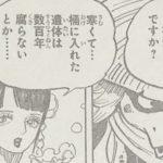 【ワンピース】常世の墓と剣豪リューマ、あるいは秋水について!