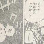 【ワンピース】ローとホーキンスのやり取り単体について思うこと!