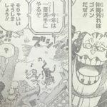 【ワンピース】アプーの異質、百獣海賊団とそぐわない違和感!