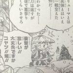 【ワンピース】若き日の赤鞘(河松)考察、まさに井の中の蛙!されど…?