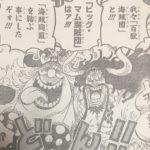 【ワンピース】みなぎる海賊同盟、最強・最凶のタッグ完成!