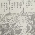 【ワンピース】日和の居場所を身内にも隠した河松について!