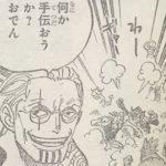 【ワンピース】若きレイリー&赤太郎・バギ二郎について思うこと!
