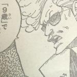 【ワンピース】報告マンの狙い&光月おでんの功績について!