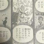【ワンピース】お鶴さんがダメ男ホイホイっぽい件について!