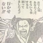 【ワンピース】赤鞘の才覚ランキング・トップ3はこの順になりそう!