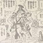 【ワンピース】侍魂(さむらいだましい)に対する思考整理!
