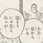 【ワンピース】若き日のシャンクス&バギーに対する周囲の評価!