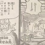 【ワンピース】黒炭せみ丸の強さと実力、バリバリの実の先代!