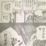 【ワンピース】カイドウに対する交渉権、白ひげの動きについて!