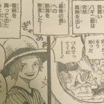 【ワンピース】ラフテルの手がかり「運が良い」の解釈について!