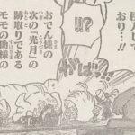 【ワンピース】狙われたモモの助の命&ワノ国の盾と矛について!