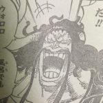 【ワンピース】小物すぎるカイドウちゃん、勝てそうな敵に格下げ!