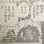 【ワンピース】ドフラミンゴを上回る男としての黒炭オロチの人物像!