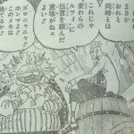 【ワンピース】983話・984話に繋がる謎と伏線、モモの助に期待![→985話]