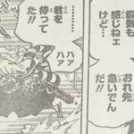 【ワンピース】984話・985話に繋がる謎と伏線、ヤマトの存在が気になる![→985話]