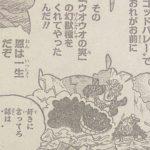 【ウオウオの実】カイドウの能力はリバイアサンor鯉(こい)、あるいは古代兵器のトリガーか?