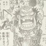【ワンピース】不死と再生、黒炭オロチの能力について!