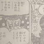 【ワンピース】ペロスペローによる奇襲作戦、マルコの視野について!