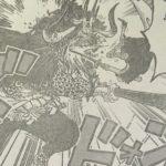 【ワンピース】対カイドウ戦における対カイドウ戦におけるインジェクションショットについて!について!