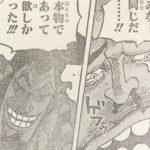 【ワンピース】カン十郎vsアシュラ童子、戦いが長引くとカン十郎が不利!
