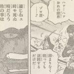 【ワンピース】対カイドウ戦、ゾロの命の行方について!
