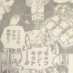 【ワンピース】2人の赤髪、キッド&シャンクス兄弟説!