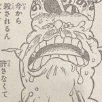 【ワンピース】主人に見捨てられた魂、ゼウスの覚悟・反抗について!