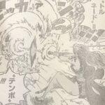 【ワンピース】ワノ国編ナミの実力、戦い方次第では相当な強さ!
