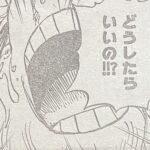 【ワンピース】うろたえるチョッパー&奇跡を疑わないサンジの対比について!