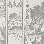 【ワンピース】錦えもんの覚悟は本物、侍の中でも執念があったね!