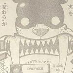 【ワンピース】ゴムゴムの実の護送・ロジャーとジョイボーイを繋ぐもの!