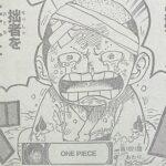 【ワンピース】モモの助大人化の残酷すぎる喪失について!