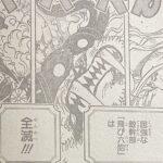 【ワンピース】1022話ネタバレ確定感想&考察、はやくもゾロ復活![→1023話]