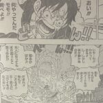 【ワンピース】1025話ネタバレ確定感想&考察、2頭の龍の邂逅![→1026話]